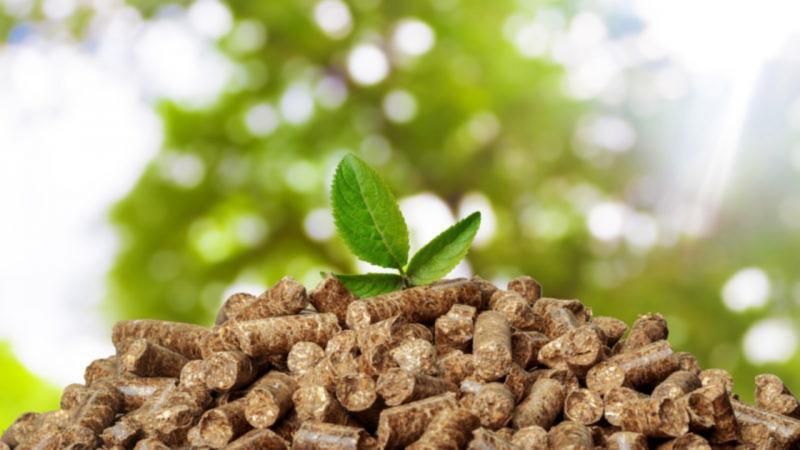 BIOEASTsUP: Usposabljanje za področje biogospodarstva